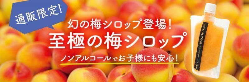 至極の梅シロップ
