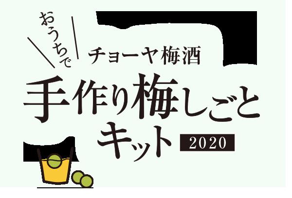 チョーヤ梅酒 手作り梅しごとキット 2020